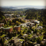 Imagine WWU's campus without trees
