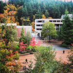 Haskel Plaza fall colors