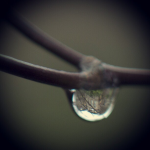 Old main reflected in rain drop